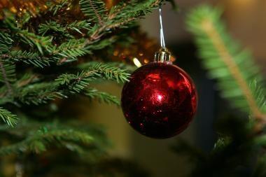 Kalėdinės eglutės galės būti panaudotos šildyti gyventojų būstus