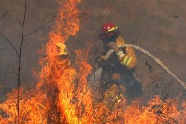 Miškininkai nerimauja dėl galimų gaisrų
