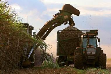 Marijampolės verslininkai ketina statyti biodyzelino gamyklą