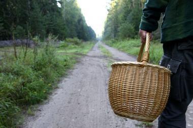 Grybautojai miške rado lavoną