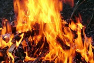 Ugniagesiai gelbėjo trimetį berniuką ir jo šeimą