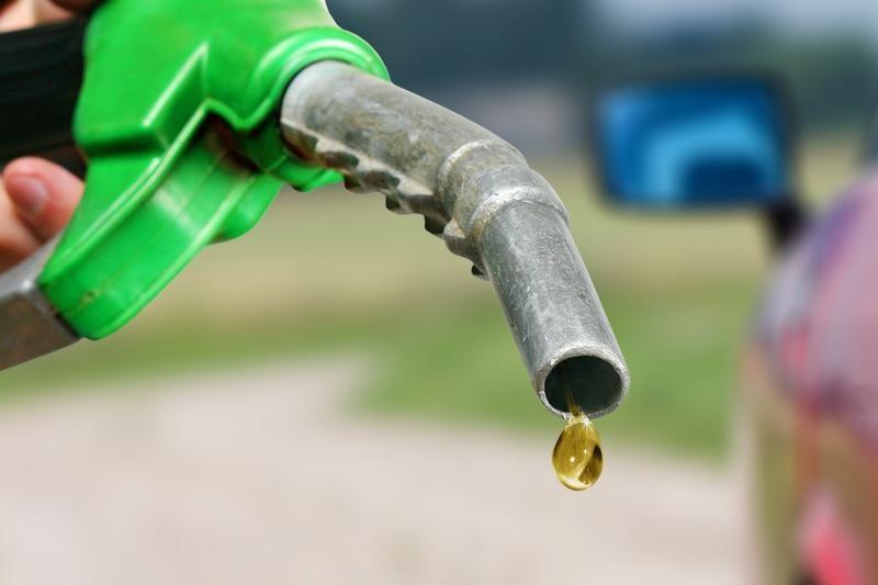 EK sprendimas biodegalų gamyklas stumtų bankroto link