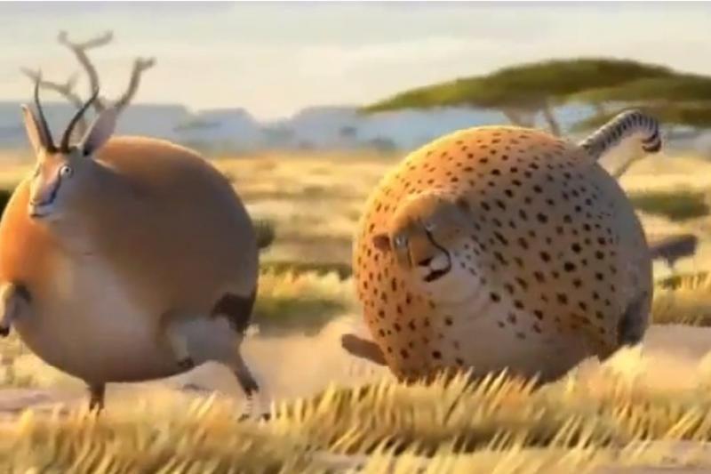 Kas būtų, jei gyvūnai valgytų tik greitą maistą?