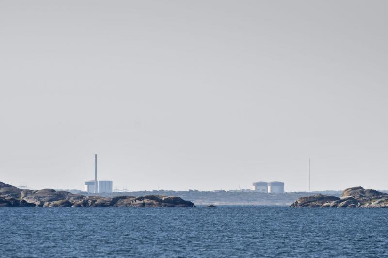 Švedijoje netoli atominės elektrinės rasta sprogmenų