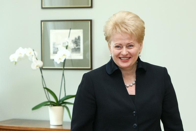 Prezidentė tikisi skaidraus susitarimo su strateginiu investuotoju į AE