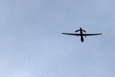 Vokietijoje per aviacijos šventę žuvo vienas žmogus, 38 sužeisti