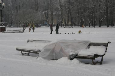 Vilniaus benamis nakvoja Lukiškių aikštėje net ir per didžiausius šalčius