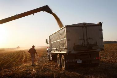Pasaulinės maisto kainos muša naujus rekordus