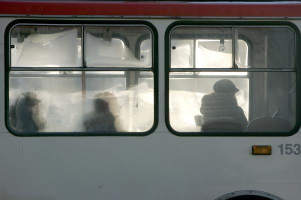 Sugedęs troleibusas sutrikdė eismą T.Narbuto gatve