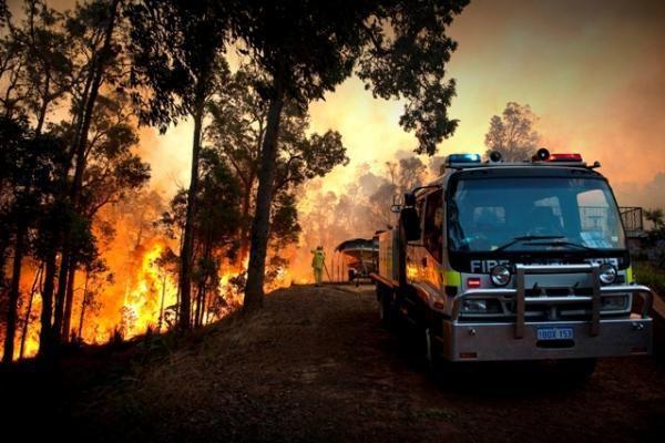 Australijoje sparčiai plinta miškų gaisrai