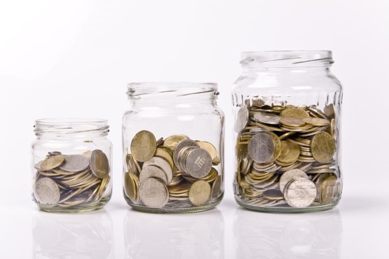 Kitų valstybių paramai Lietuva kasmet išleidžia iki 7-8 mln. litų