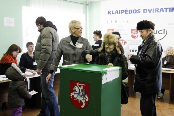 Nauji Seimo rinkimai Klaipėdos Danės apygardoje - vasarą