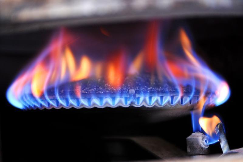 Prezidentė pasirašė Gamtinių dujų įstatymo pataisas