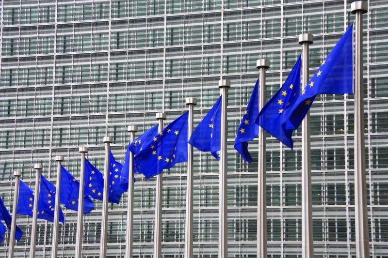 Įspėjimas: D. Grybauskaitei gali kilti sunkumų bendraujant su EP