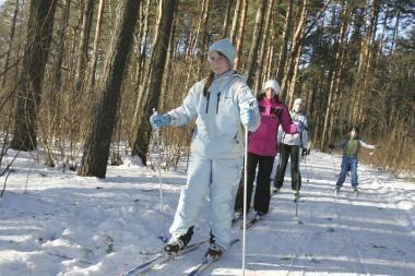 Žiemos pramogos Neringoje: parengtos slidinėjimo trasos (schemos)