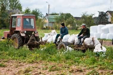 Eurostatas: žemdirbių pajamos Lietuvoje krito labiausiai Baltijos šalyse