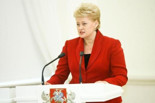 D.Grybauskaitė: neapsigaudinėkime, kad naują AE turėsime greitai