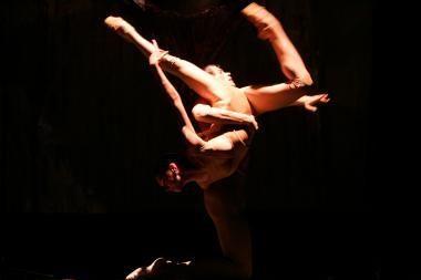 Susibūrė nauja baleto profesionalų komanda
