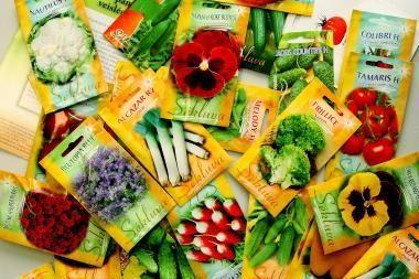 Šiemet sėklų lietuviai perka daugiau