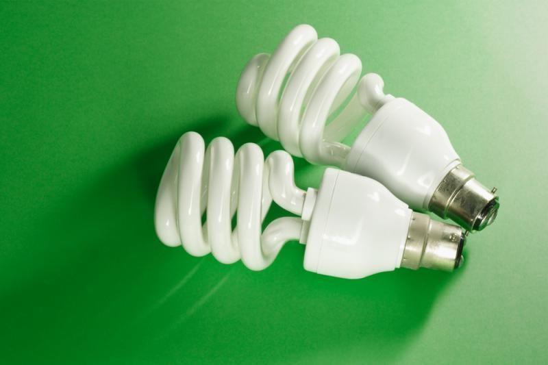 Per keturis mėnesius surinkta beveik 3 t energiją taupančių lempučių