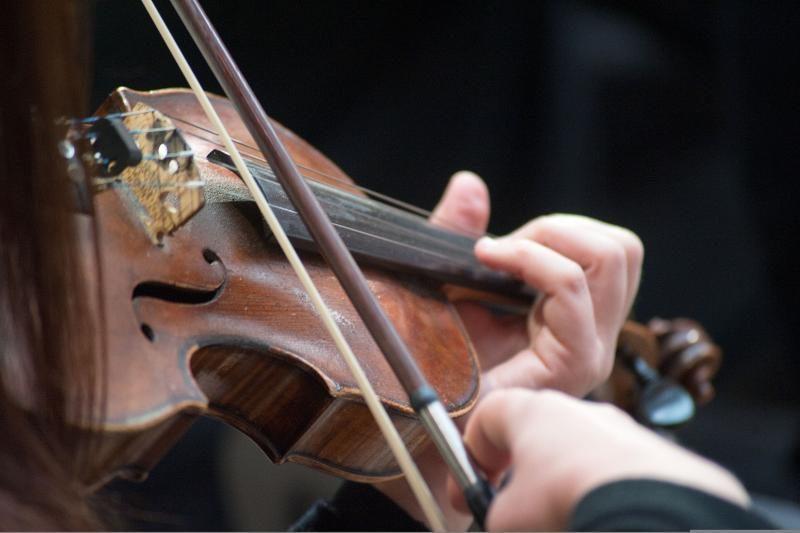Vilniuje pavogtas smuikas už 80 tūkst. litų