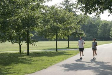 Bėgimas augina smegenis