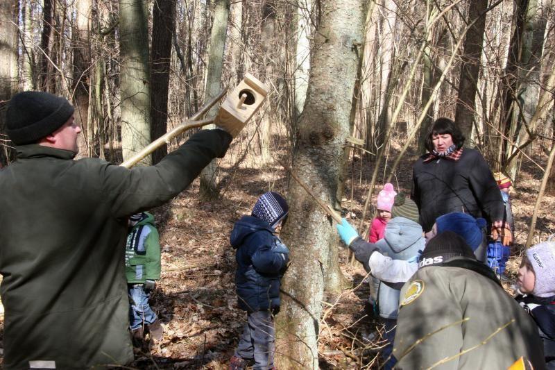 Darželinukai Šernų miške  kėlė  inkilus