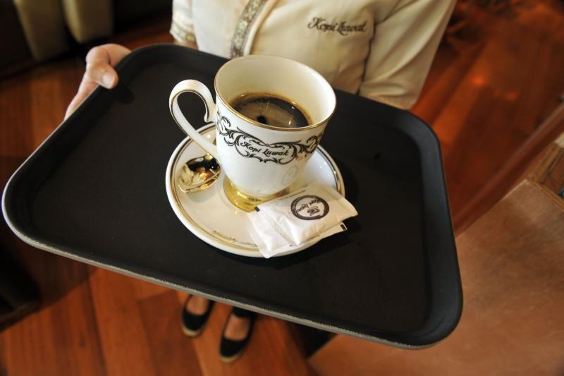 Dėl brangiausios pasaulyje kavos – žiaurus gyvūnų išnaudojimas (foto)