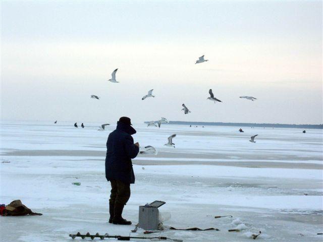 Dėl storo sniego sluoksnio vandens telkiniuose jau žūsta žuvys