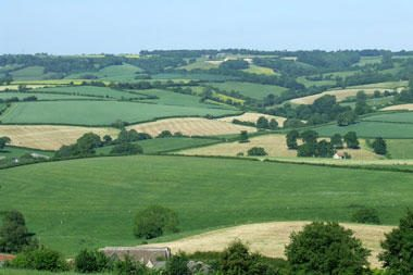 Per pirmąjį metų ketvirtį ūkininkai įsigijo 7,6 tūkst. hektarų valstybinės žemės
