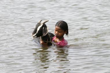 Indiją siaubia potvyniai