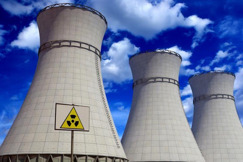 Socialdemokratai – už referendumą dėl naujos atominės jėgainės