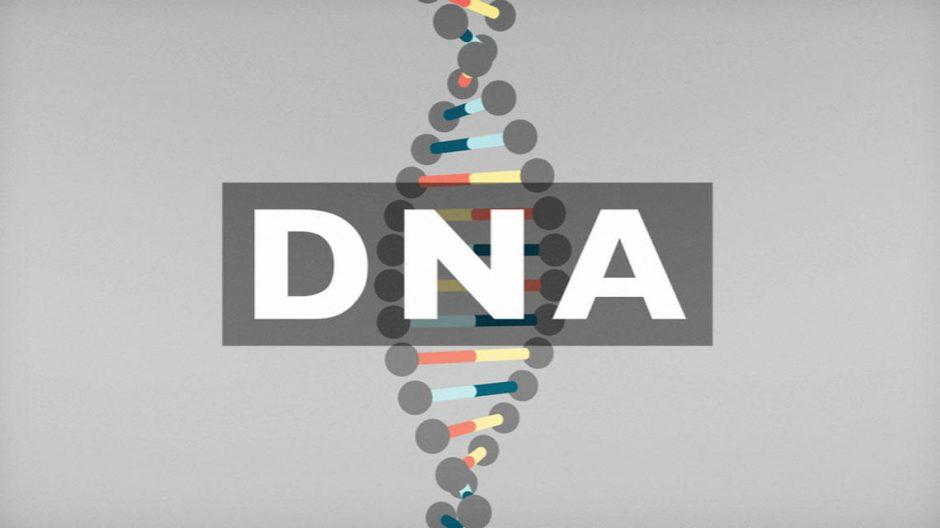 Trys minutės apie DNR – net ir labiausiai nekenčiantiems vadovėlių
