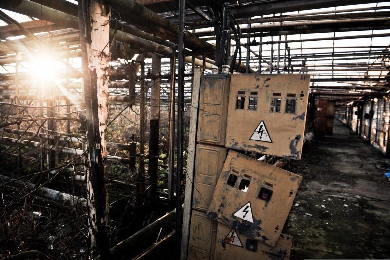 Nelaimė Vilniaus rajone: elektra pražudė paauglį