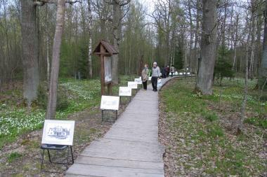 Šeštadienį - plukių žydėjimo šventė Neries regioniniame parke