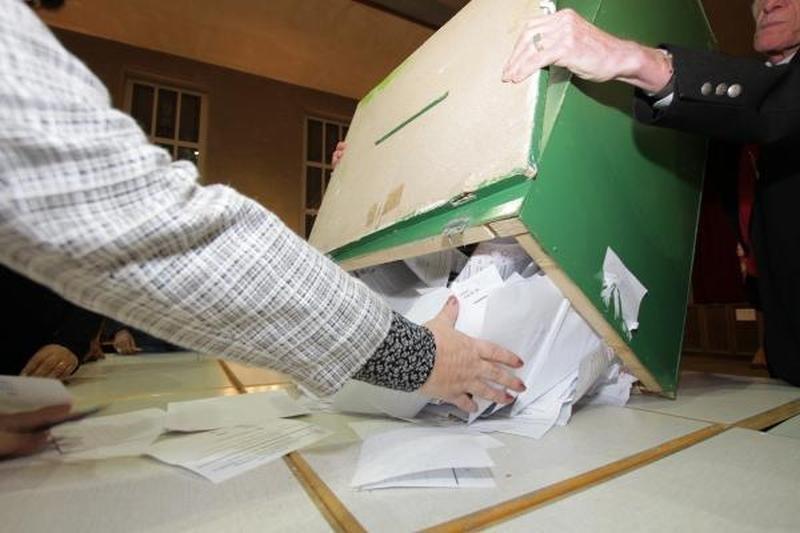 Oficialu: į Seimą pateko N.Puteikis, R.Paliukas, E.Masiulis, P.Žeimys