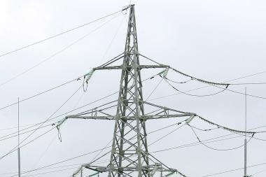Prezidentė: Lietuva planuoja dar labiau liberalizuoti elektros energijos rinką