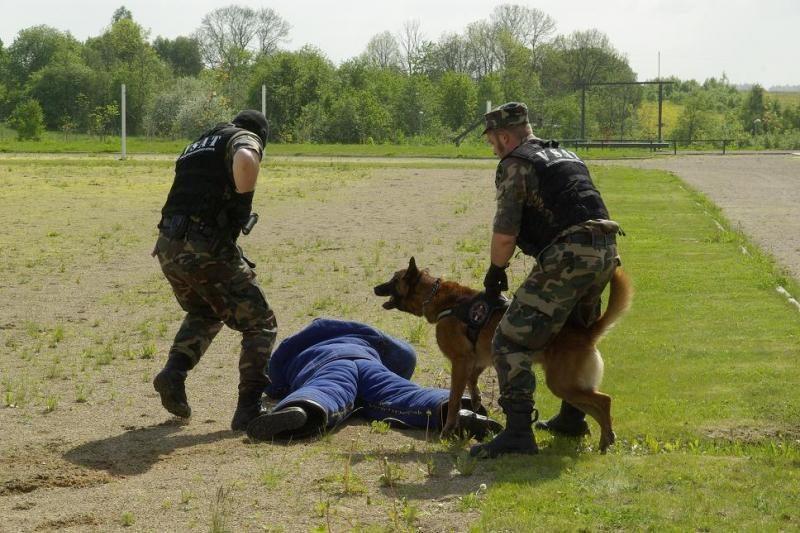 Pasienyje sulaikyta 18 atėjūnų iš Gruzijos ir Afganistano