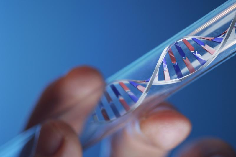 Laiškas apie išaiškintą DNR struktūrą parduotas už 6 mln. dolerių