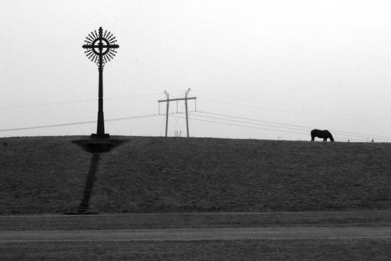 Fotografijų parodoje Klaipėdoje – gyvos žemės mintys