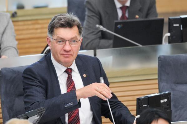 A.Butkevičius: partijų finansavimo projektą reikėjo pateikti vėliau