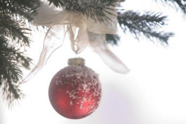 Rudaminoje nuniokota Kalėdų eglutė