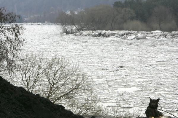 Potvynis pamaryje: ruošiamasi sprogdinti ledus Atmatoje