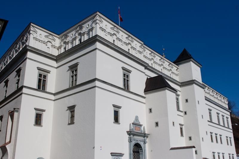 Valdovų rūmams palikti 8 mln. litų