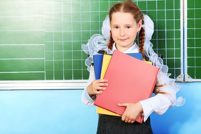 Lietuviškoms mokykloms Lenkijoje ketinama skirti 350 tūkst. litų