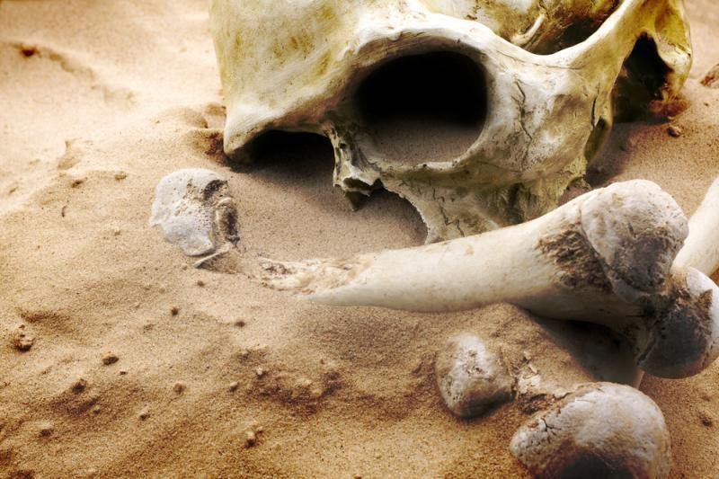 Kasinėdami Vilniuje geležinkelininkai rado žmogaus kaukolę