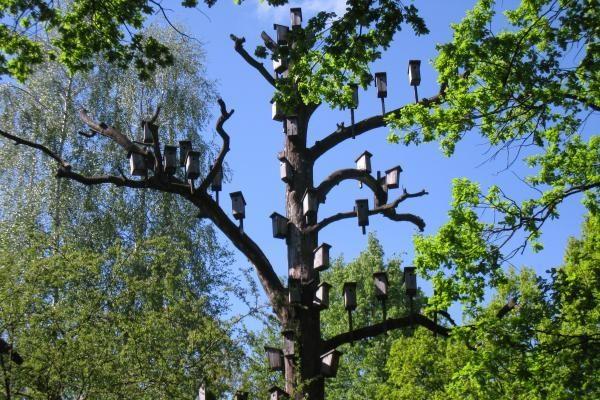 Kabinant inkilus reikia nepamiršti privačios paukščių erdvės