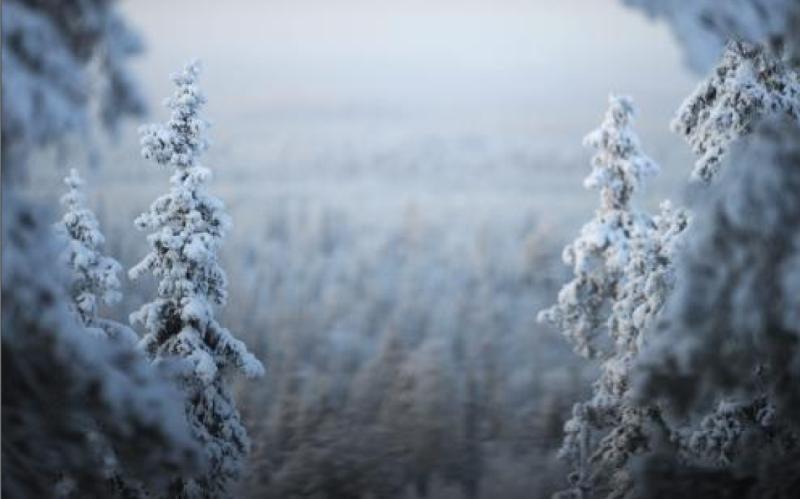 Lenkijoje užregistruota pirmoji žiemiškų orų auka