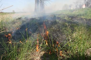 Žolės degintojai negaus tiesioginių išmokų