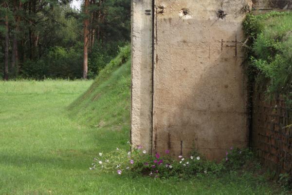 D.Kedžio artimieji mano radę daugiau įrodymų, jog vyras buvo slepiamas netoli Kauno marių